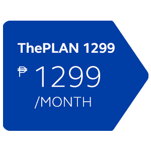 ThePlan 1299 with Device