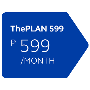 ThePlan 599 with Device